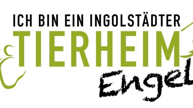 Tierheimengel_Logo