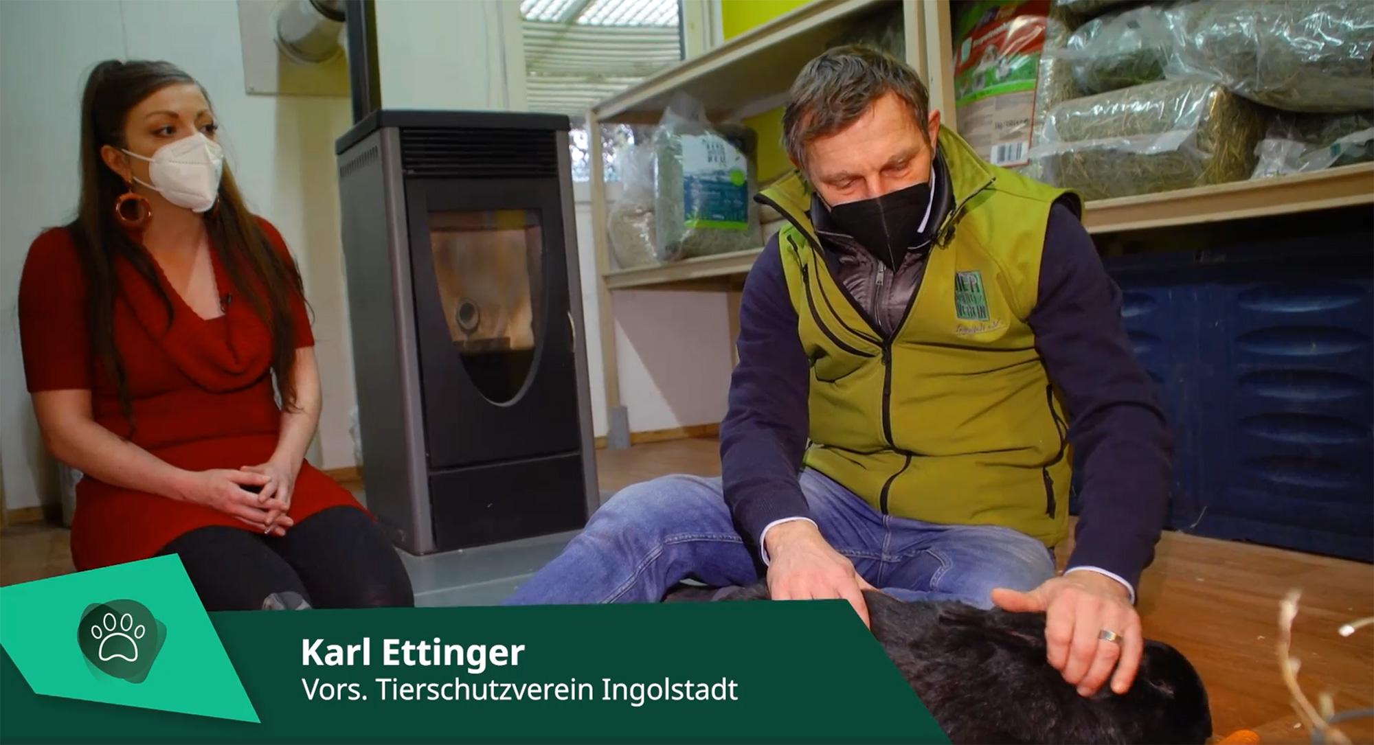 tvIngolstadt zu Besuch im Tierheim
