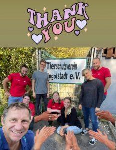 Audi Freiwilligen Tag im Tierheim